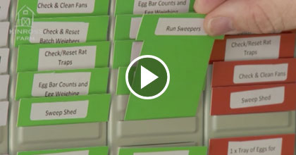 TXM Lean Minute – How to Choose the Tasks for your Red-Green Task Board (Kamishibai)